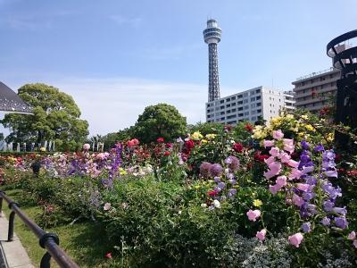 160514yokohama9